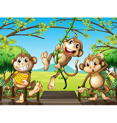 Three monkeys at the wooden bridge vector image vector image