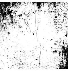 Realistic grunge black and white Texture vector image