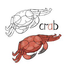 hand drawn crab isolated on white vector image