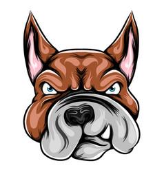 Head pitbull with fierce face vector