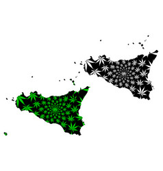 Sicily - map is designed cannabis leaf vector