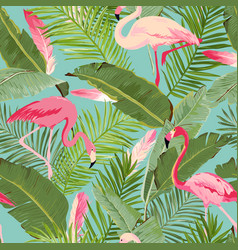 tropical seamless flamingo and summer pattern vector image