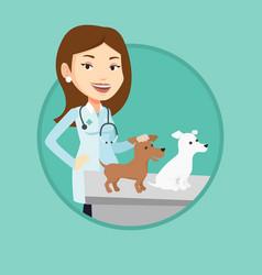 Veterinarian examining dogs vector