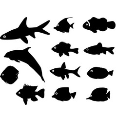 Fish silhouettes vector image