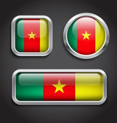 Cameroon flag glass buttons vector image