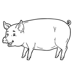 cartoon pig line art vector image