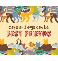 Cats and dogs pets friends hugs frame border card vector