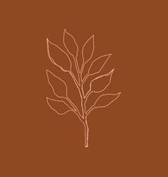 line art terracotta minimal simple leaf print vector image