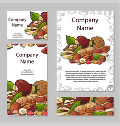 set of cards with nuts and seeds pistachios vector image