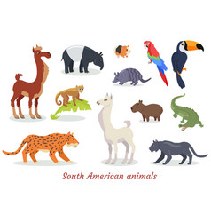 South american animals cartoon set vector
