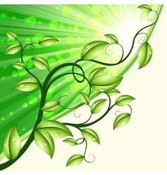dynamic nature design in green and tan vector image vector image