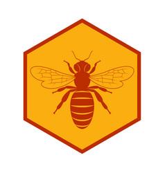 Bee in honeycomb vector