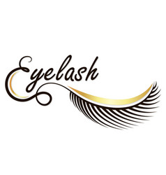 Eyebrows and eyelashes salon vector