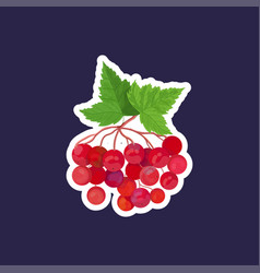fresh viburnum icon tasty ripe fruit berry healthy vector image