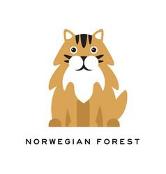 Norwegian forest cat fluffy domestic animal vector