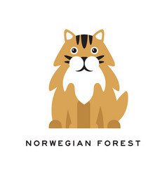 norwegian forest cat fluffy domestic animal with vector image