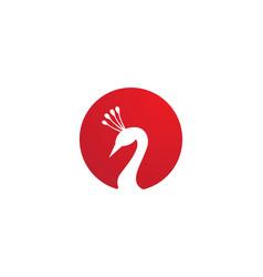 Peacock head logo and symbols template icon app vector