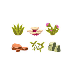 set natural landscape elements green grass vector image
