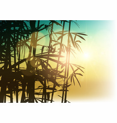 silhouette of bamboo on sunlight background vector image