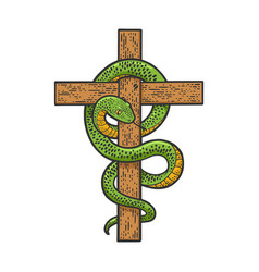 Snake on cross sketch vector