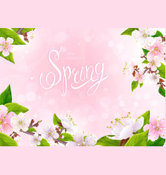 spring collection background vector image
