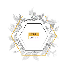 template tea branches vector image vector image