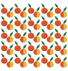 orange citrus seamless pattern vector image