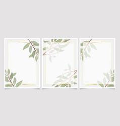 beautiful minimal seeded eucalyptus leaves with vector image