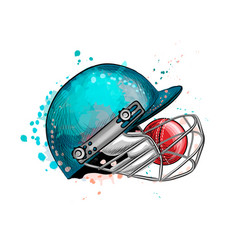 cricket helmet with ball from a splash of vector image