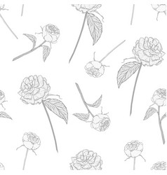 Elegant seamless pattern with blooming roses on vector