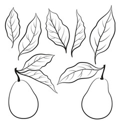 Set of pears pictograms vector