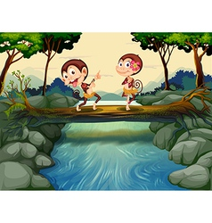 Two monkeys dancing while crossing the river vector image