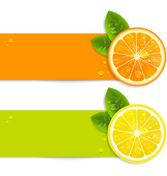 Banners with Orange and Lemon vector image