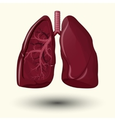 Human lungs icon vector image vector image