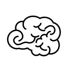 brain head mind human organ vector image