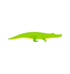 crocodile alligator reptile in flat design vector image