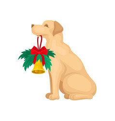 cute labrador dog holding christmas bell with fir vector image