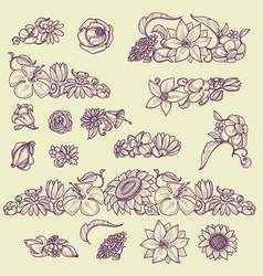 floral design elements and page decorations set vector image