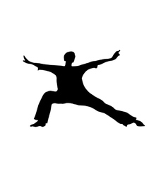 Karate black silhouette vector image