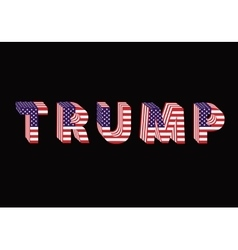 Letters from flag Trump Donald election table vector image