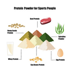protein powder infographic set vector image