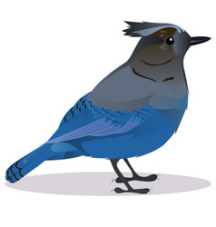 stalker joke bird vector image