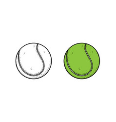 tennis ball hand drawn sketch and color vector image