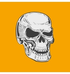 Isolated black and white smiling human skull vector image vector image