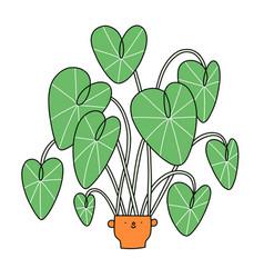 cartoon alocasia character in a cute pot vector image