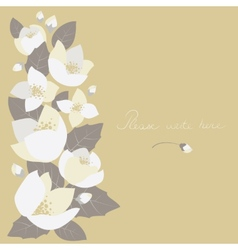Greeting card with jasmine flowers vector image