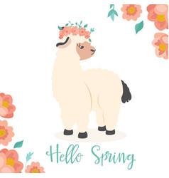 hello spring alpaca vector image