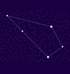 Sculptor constellation starry night sky zodiac vector