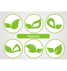 Set of green leafs images vector image