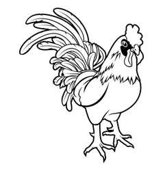 stylised rooster vector image